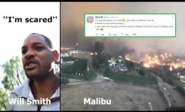 California fire: Will Smith, Lady Gaga, Cher and other celebs forced to evacuate - Nov 11, 2018